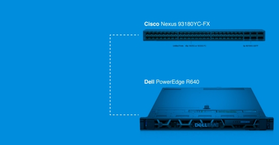 Cisco Nexus 93180YC-FX to Dell R640 | FluxLight.com